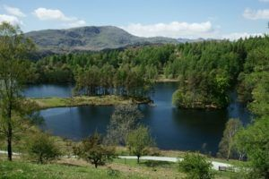 Tarn Hows walk Ambleside
